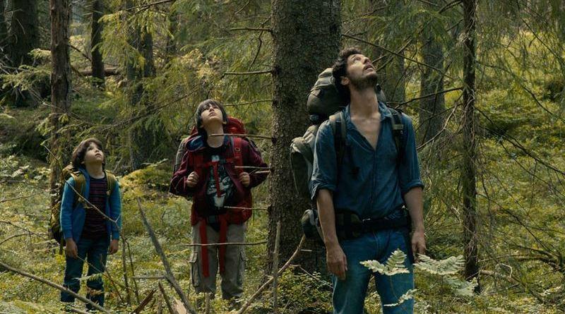 w głąb lasu