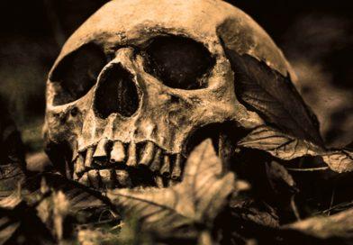 Zaginiona – Piotr Kościelny – recenzja